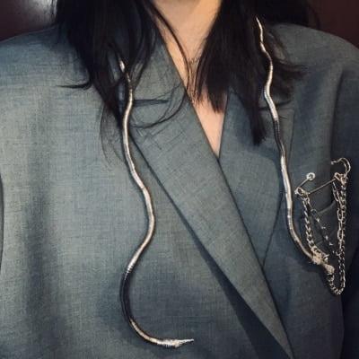 Slithering Snake Necklace  / Pins